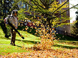 A man clearning leaves with a leaf blower